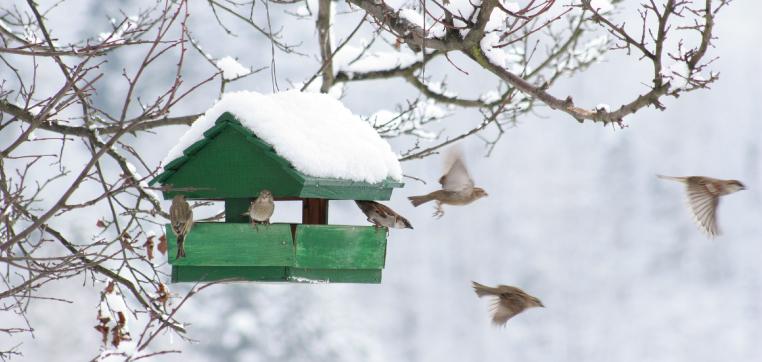積雪でパネルが外れるのを防ぐには