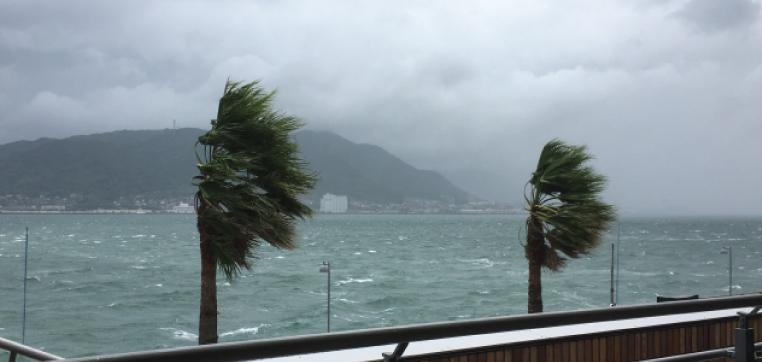 群馬県は台風が少ない土地柄とはいえ、やはり風災は怖いもの